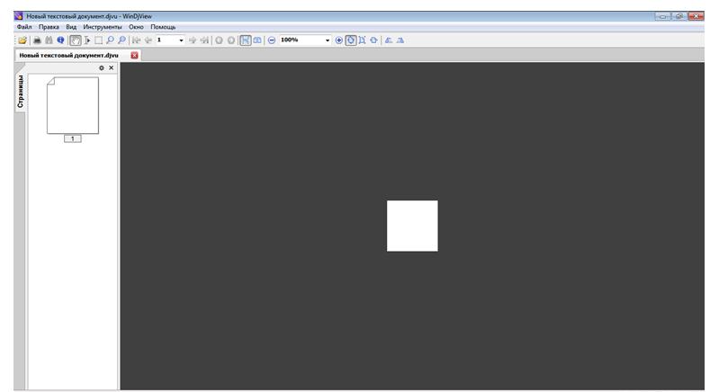 Как открыть файл DjVu. Окно программы WinDjView.