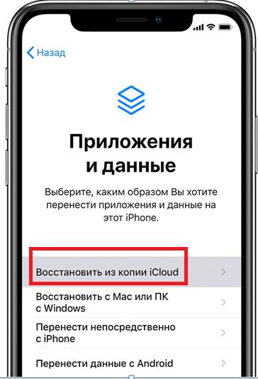 Восстановить из копии icloud. Окно приложение и данные.